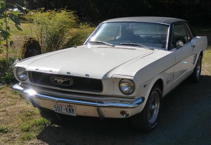 Ford Mustang Wanted 1964-72  Fastback Conv Cpe