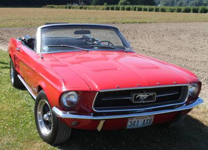 Mustang Fastback or Convertible Wanted  1964-1972